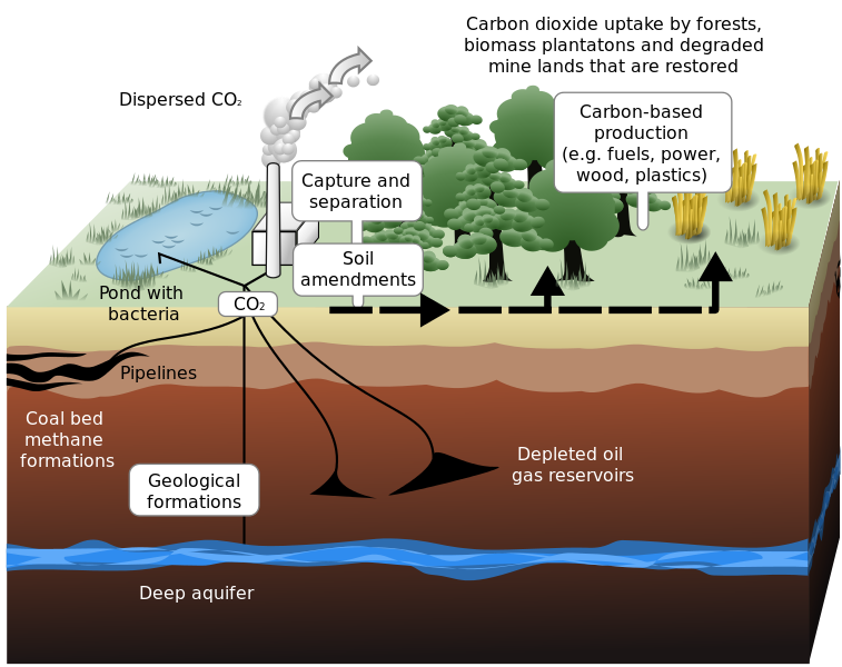 Carbon sequestration 2009 10 07